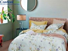 Комплект постельного белья Asabella евро тенсел 1627-6/180*30