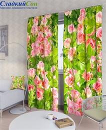 Комплект фотоштор ТомДом Солнечные розы