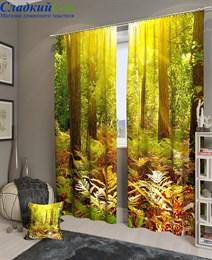 Комплект фотоштор ТомДом Полдень в лесу