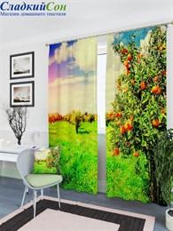 Комплект фотоштор ТомДом Плантации апельсиновых деревьев