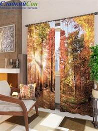 Комплект фотоштор ТомДом Цветной буковый лес