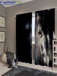 Комплект фотоштор ТомДом Взгляд лошади