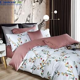 Комплект постельного белья Asabella 1442-6 Евро белый