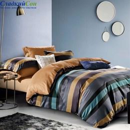 Комплект постельного белья Asabella 1519-6 Евро мультитон